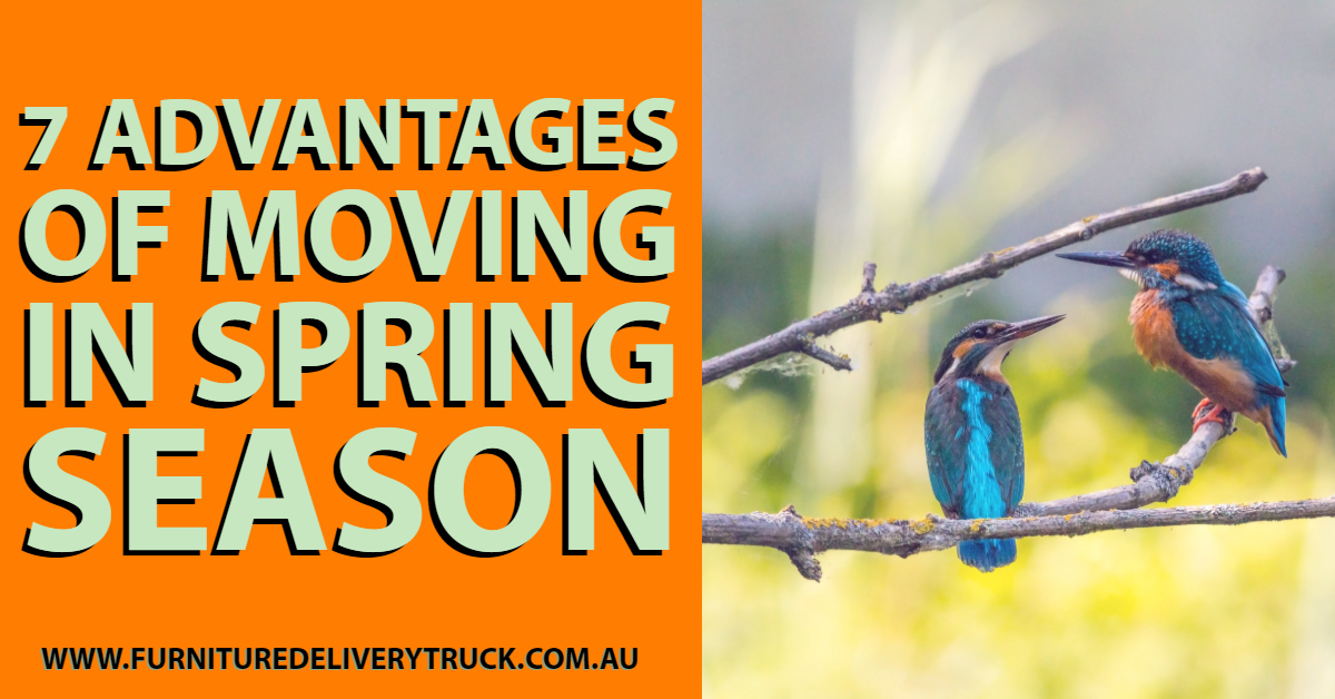 7 Advantages of Moving in Spring Season